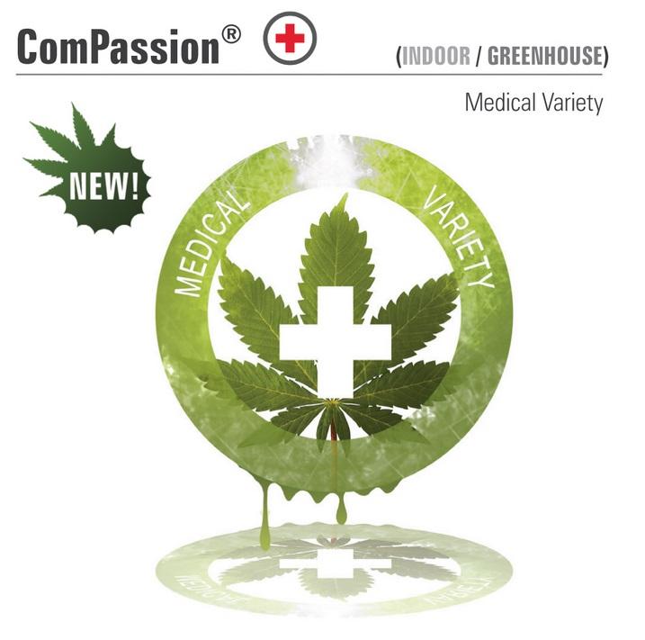 Dpf5 Compassion